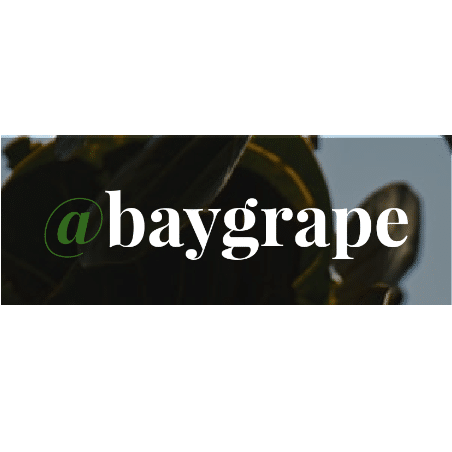 baygrape logo